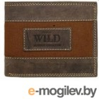 Cedar Always Wild N992-JEANS Brown