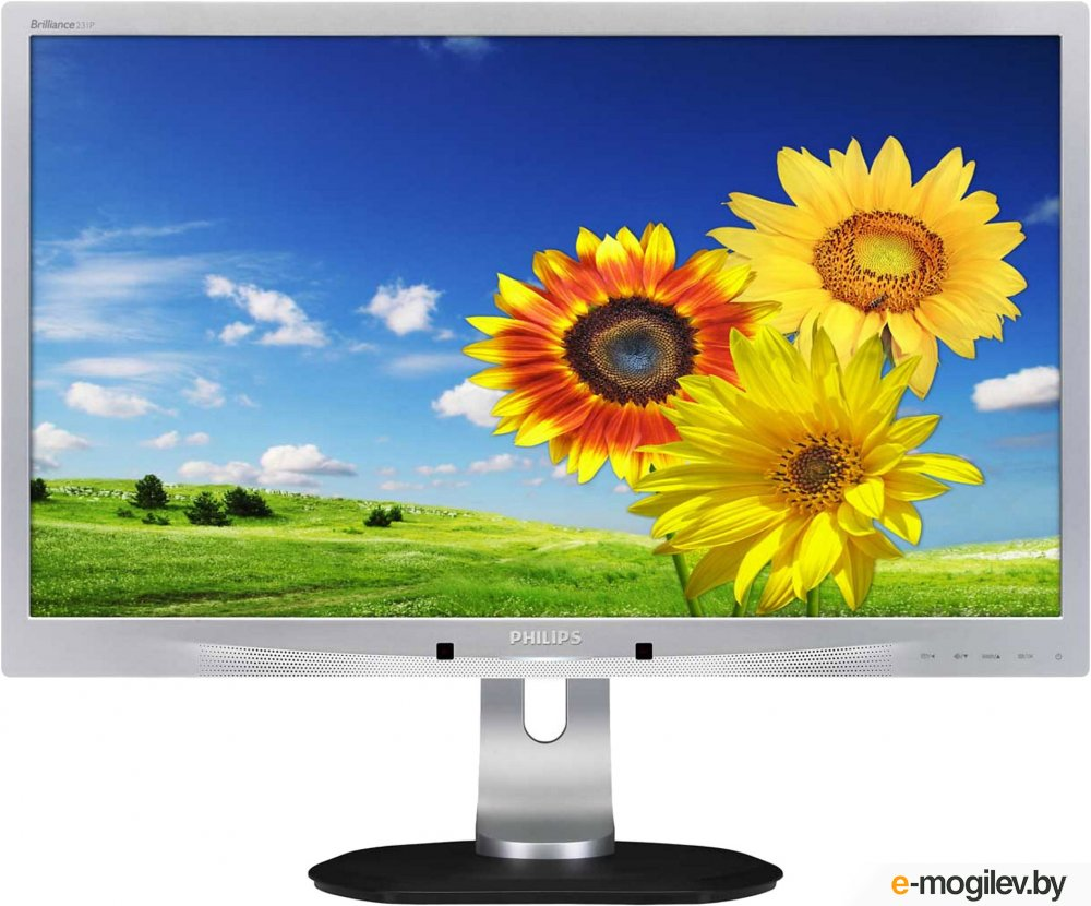 Philips 231P4UPES/00 <Silver>; 5ms; 1920x1080; VGA, W-LED